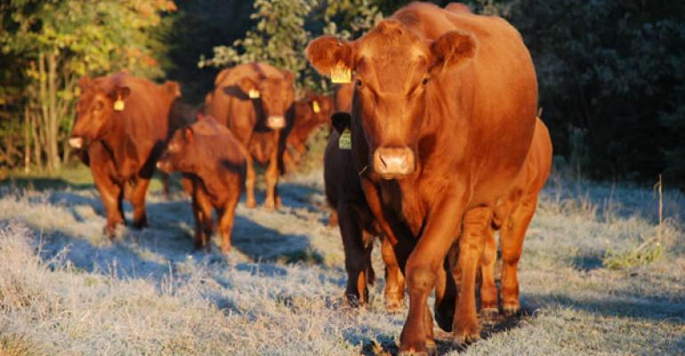 5 Trending Headlines: Implications of China's beef announcement; PLUS: Protect fall pastures