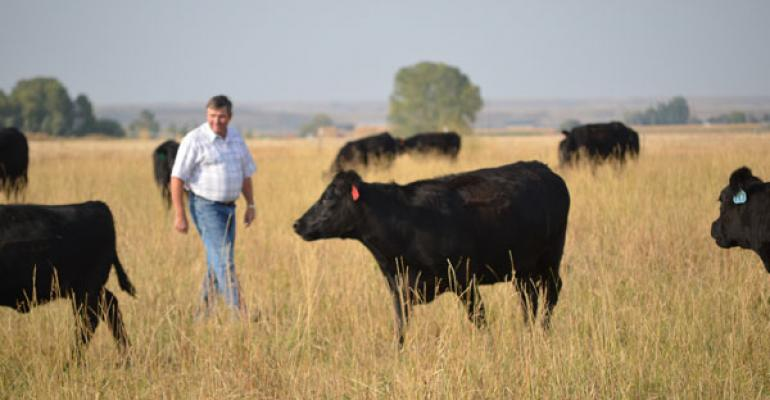 Wyoming Dairyman, Beef Producer Will Serve As 2013 NCBA President