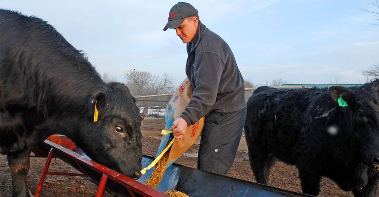 Making a fair cow lease