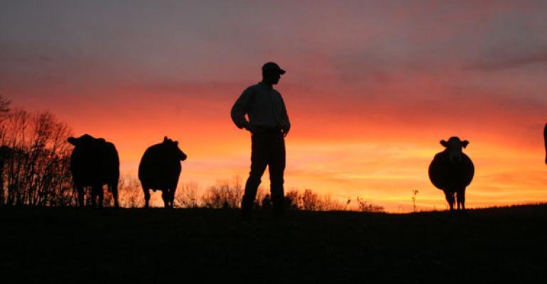 Beef industry outlook