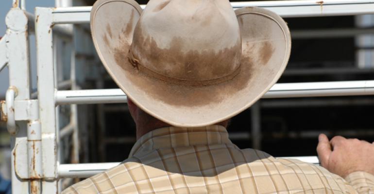 Looking ahead in the beef industry