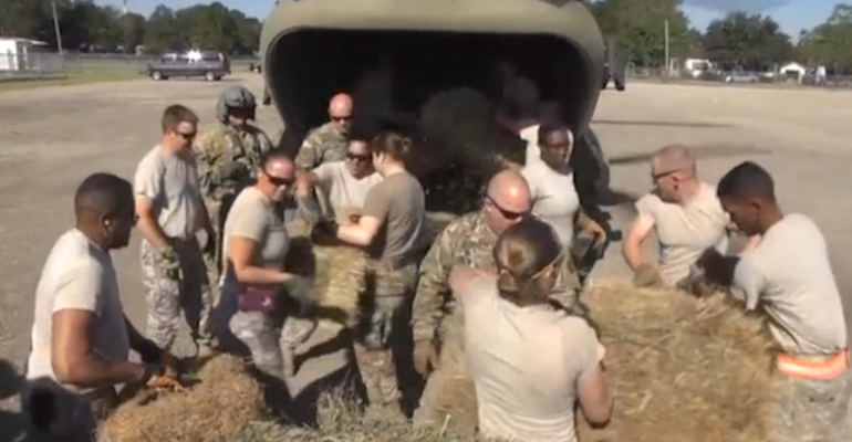 National Guard dropping hay