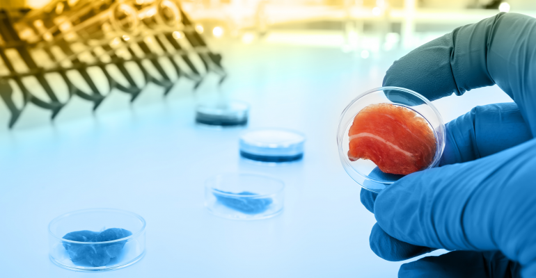 Meat grown in lab conditions