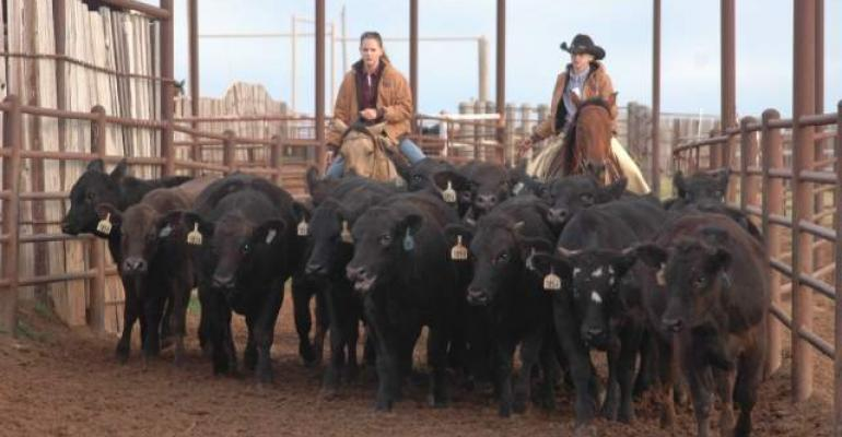 Regulation limits ranching