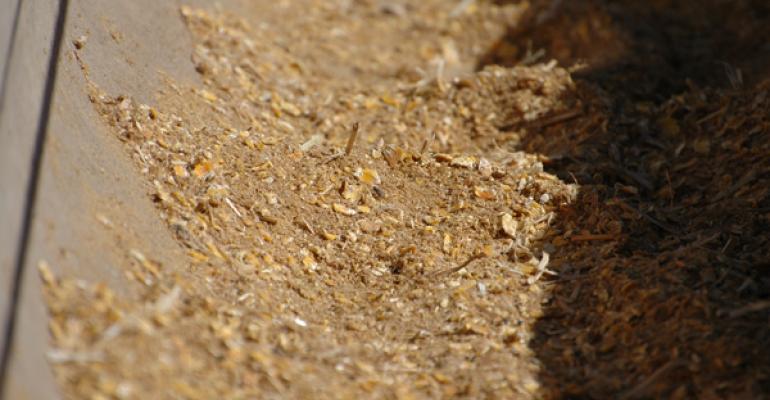 Understanding dry matter intake