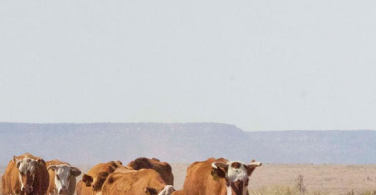 New Mexico's Iconic Bell Ranch Changes Hands