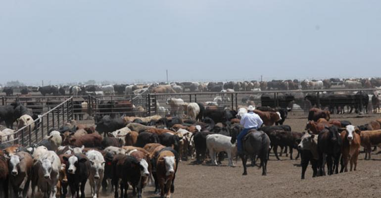 U.S. Feedlot Salaries Are On The Rise