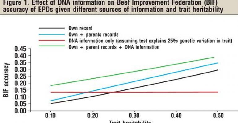 Combining EPD Info With DNA Test Results Improves Genetic Prediction Accuracy