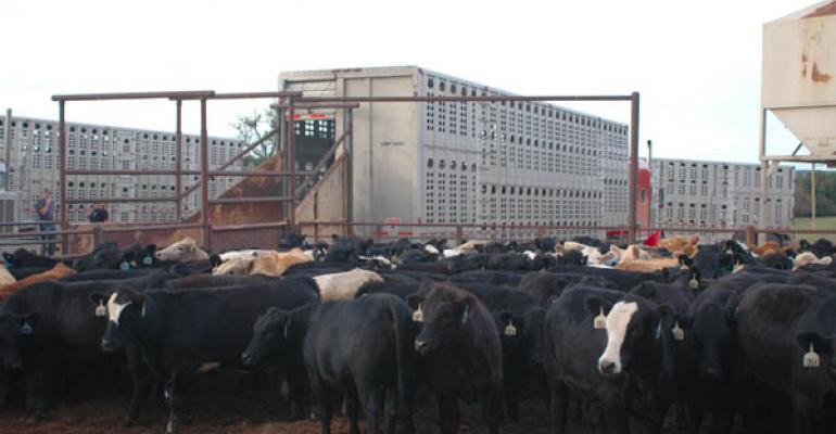 Beef Demand Strength Expected Through 2012