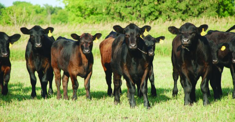 Key Factors Of Success In Preconditioning Highlighted