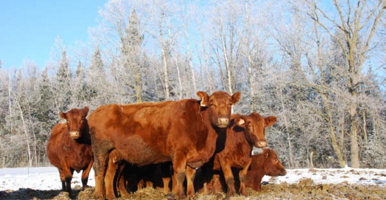 Winterizing: A Modest Time Investment Pays Big Bucks
