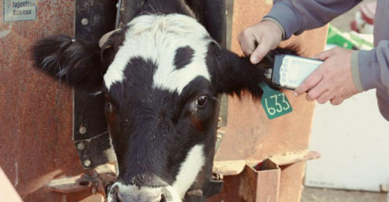 2012 Directory of Cattle RFID Service & Supplies