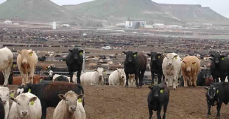 Beef Demand Is The Key To Cattle Prices In 2012