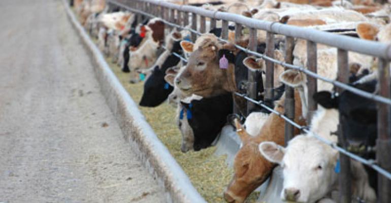 FDA Limits Use Of Cephalosporin In Food Animals