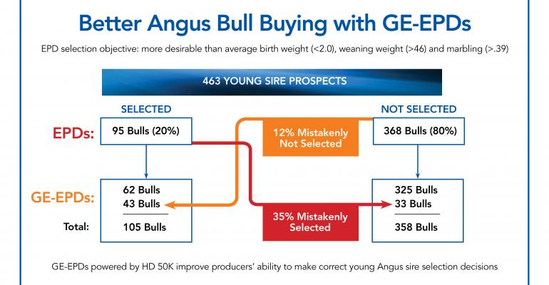 Improve Ability To Make Accurate, Profitable Decisions About Young Angus Sires