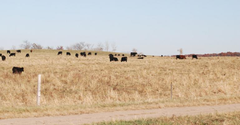 Look Ahead | Eyes On Weather And Wholesale Beef Value