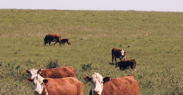 Strategic Weed Control Helps Oklahoma Rancher Improve Pastures