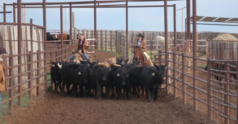 Dwindling Herds, Overseas Demand Drive Up Beef Prices