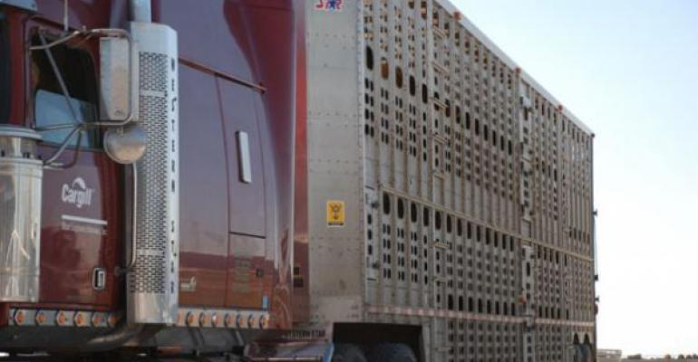 Packers Struggle To Increase Beef Prices