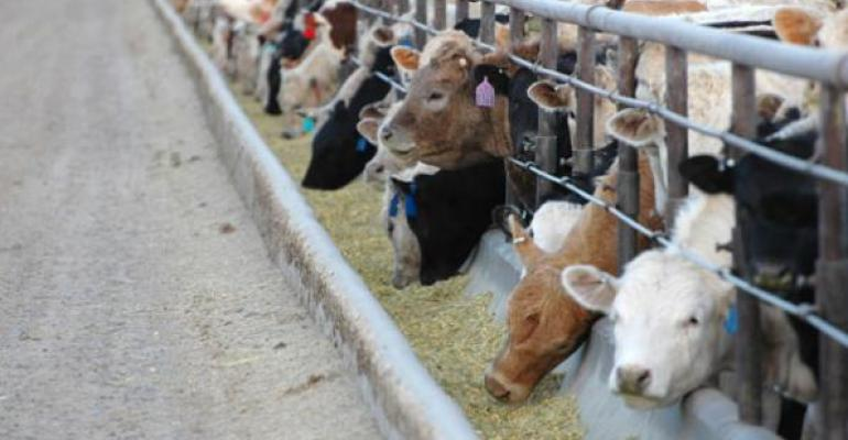 Weather-Beef Markets Weigh On Auction Demand
