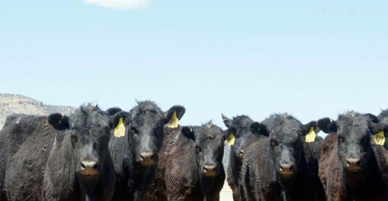 Drought Takes Toll on Mexican Agriculture