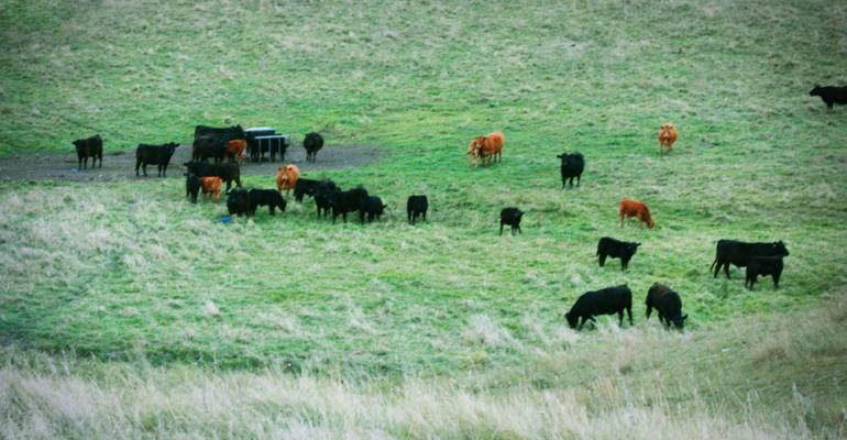 Drought Predictions Worry Farmers