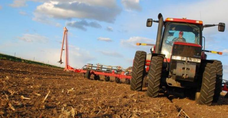 Corn Crop Could Be Record Large