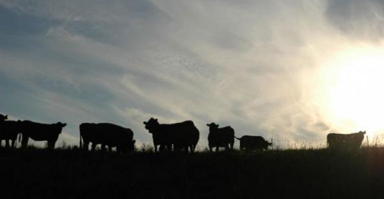 Annual BEEF Reader Survey Finds Optimism Continues