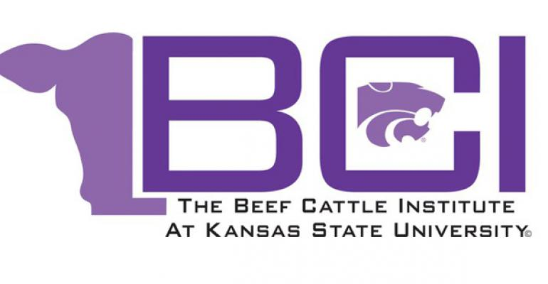 Youth Beef Quality Assurance Training Modules Now Available Online