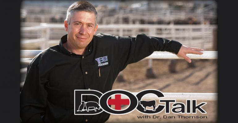 Veterinary Professor Making House Calls As Host Of National Cable Program