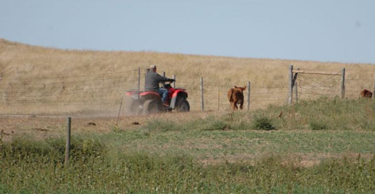 Website Keeps Farmers And Ranchers Apprised Of Safety, Health Concerns