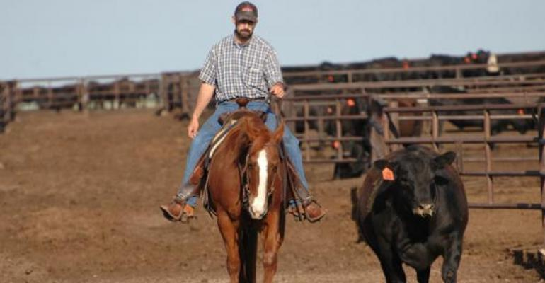 BQA Is Making A Difference, National Beef Head Says