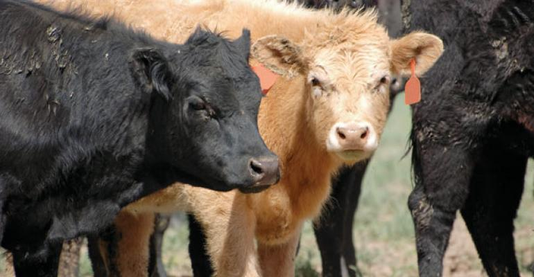 Kentucky/Tennessee CPH Moves To 60-Day Weaning