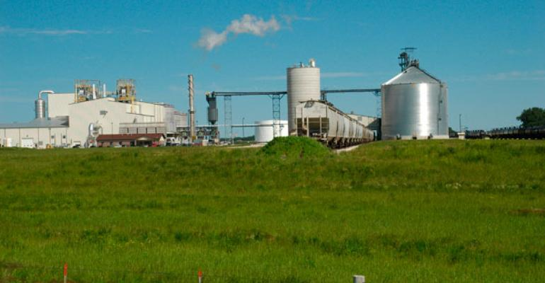 Biofuels Will Continue To Drive Feed Prices