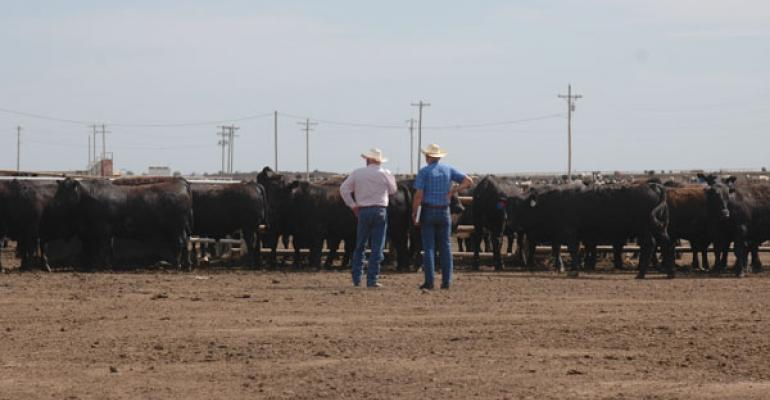 Is Your Ranch Ready For New Ideas?