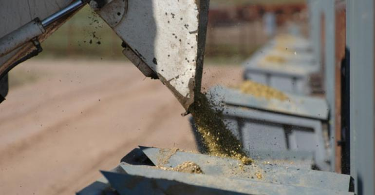 tips for high cattle feed costs