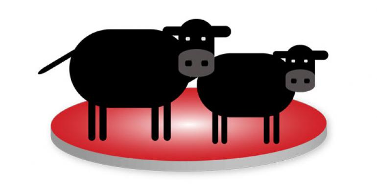 Beef Production Business Plan