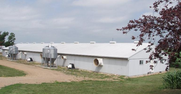 Drought Economics Forcing More Pork to Market