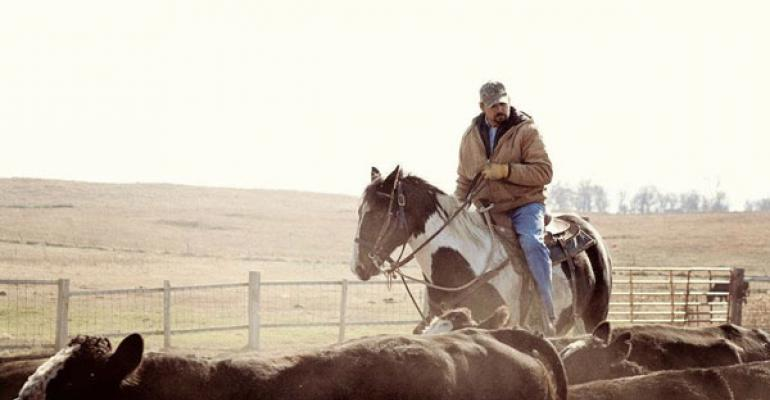 """Finalists Selected In """"Workhorses"""" Of The Ranch Photo Contest"""