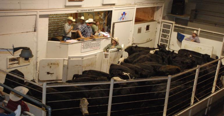 Cattle Auction Barn