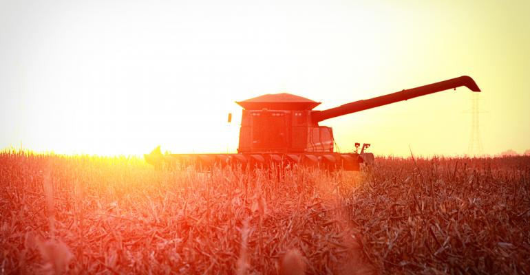 Fall corn combine