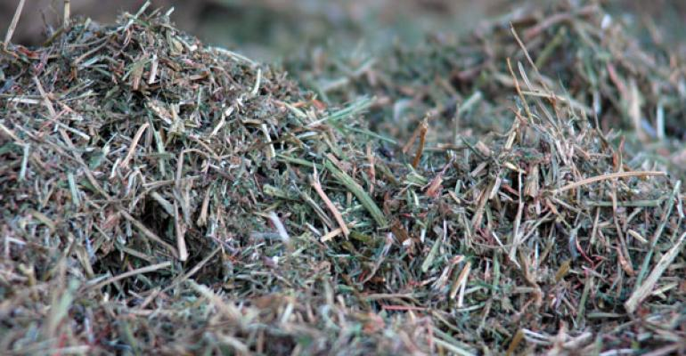 hay prices on the rise