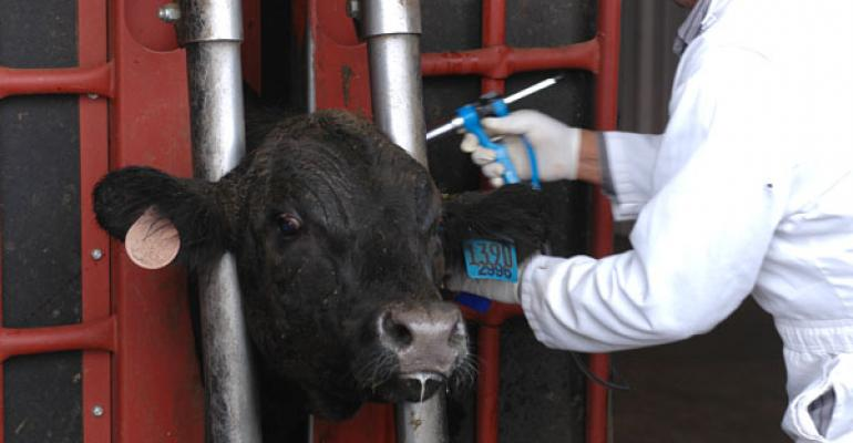 livestock antibiotic use