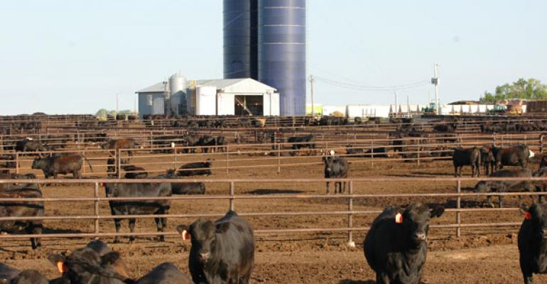 Mother Nature Impacting Cattle Placement Numbers