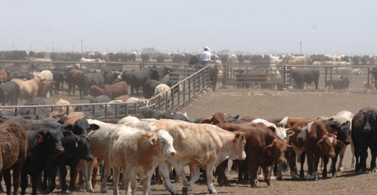 U.S. Feedlots Bought Fewer Cattle in December Compared With 2011
