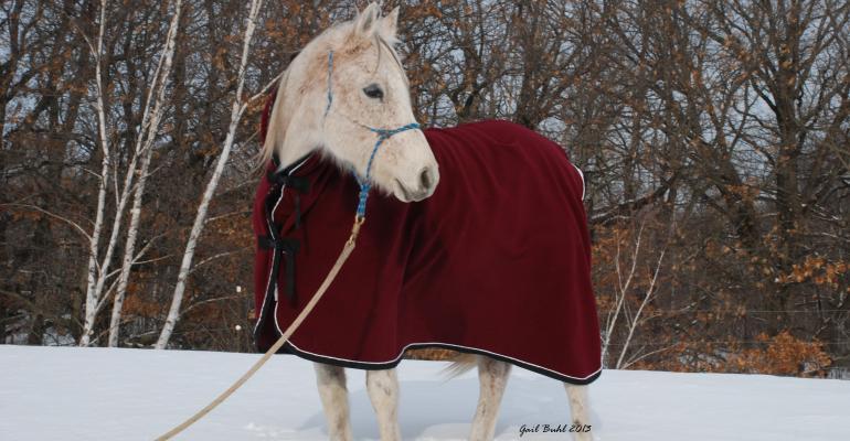 WikSmart Cooling Blanket