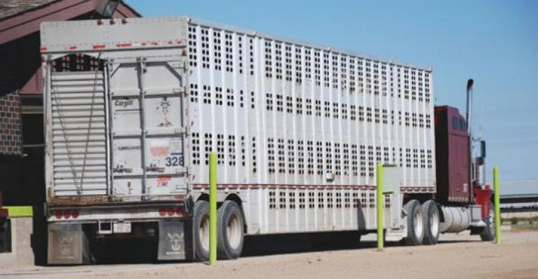 US beef export challenges