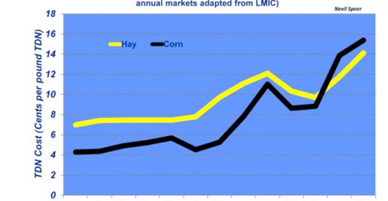 beef cattle feed prices corn vs hay