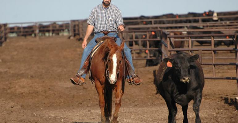 animal handling practices from bud williams