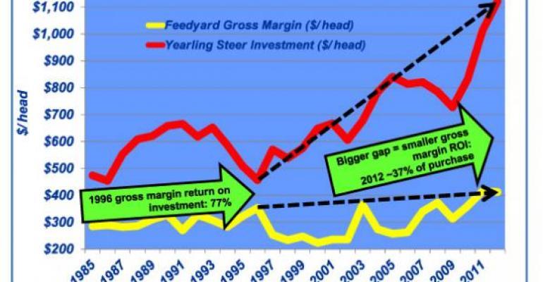 annual feedyard gross margin